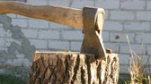 kenevir : Large village ax sticking in tree stump