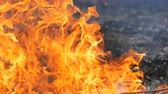 entrar : Flame of flames fire close view Stock Footage