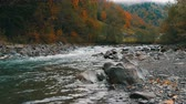 eroze : Quick, cold mountain stream Cheremosh in the Carpathian mountains on the background of rocky shore. Early autumn foggy morning in mountain village of Dzembronya Dostupné videozáznamy