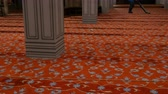 один человек : Man vacuuming huge red carpet in a blue mosque, Istanbul