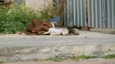 suja : Homeless man lies and sleeps on the street under fence covered with material from sun
