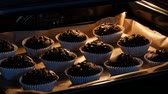 koekenpan : Delicious chocolate muffins are cooked in the oven. Chocolate muffins in paper molds sprinkled with chocolate powder in form of cubes