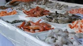 販売さ : Various seafood on counter of the grocery market. A variety of prawns, octopuses, lobsters with price tags in German 動画素材