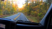 umírající : TimeLapse 10X - Driving Under Trees and Through Small Towns During Fall in Vermont.