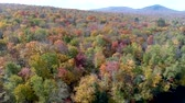 umírající : Aerial Drone - Fly Off Lake and Over Colorful Tree Canopy in Fall in Vermont.
