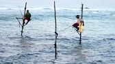 fishing rod : Galle, Sri Lanka - 2019-04-01 - Stilt Fishermen - Two Men. Stock Footage