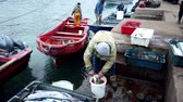 Fishing Boat Leaves Pier As Man Cleans Recently Caught Fish. Vídeos