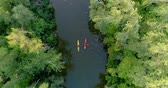 veslo : Two kayaks are sailing along a scenic river. Aerial view. Dostupné videozáznamy