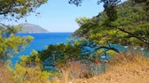 Beatuful sea view with yahct and boats on background through the pine trees branches. Paradise place for summer vacation in Mediterranean sea.