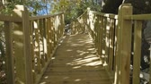 ウッドランド : Boardwalk through an autunm forest in sunshine weather. Camera moving in slow motion 動画素材