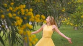 akác : Young beautiful smiling woman with long blond hair in yellow dress walking in spring Australian Golden wattle trees garden between traffic roads. Green park zone in modern city. Slow-motion clip.