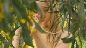 akác : Portrait of young beautiful smiling woman with long blond hair in yellow dress standing under spring Australian Golden wattle tree in spring garden. Stock mozgókép