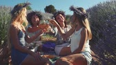 ziyafet : Four pretty woman have a picnic, sitting on the plaid in lavender field, talking and clinking glasses with white wine. Hen party concept. Stok Video