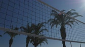 siatkówka : Volleyball net with beautiful palms on the blue sky background Wideo