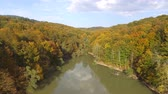 Aerial drone view above the pond in the colorful beech forest in autumn. Flying above the water.