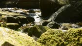 A stream of water shining in the light and a rock covered with moss Wideo