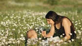 ovesná kaše : Slow motion of a young happy mother feeds her baby sitting in the middle of a flower field in the Park. Dostupné videozáznamy