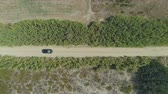 enrolamento : Drone following cars driving at countryside road with trees on the side in Lemnos, Greece
