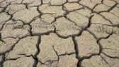 desolazione : Cracked earth bottom caused by bad drought in Bulgaria. Studena dam near Pernik, Bulgaria