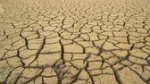 bottiglie di plastica : Panoramic view of the cracked mud bottom of dried out dam in Bulgaria. Disastrous drought Filmati Stock