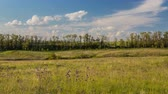 Russia, time lapse. The movement of the thunderclouds over the fields of winter. Vídeos
