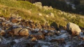 elbrus : Russia, time lapse. Movement of clouds and water flows in a stormy river in the Caucasus mountains in summer Stock Footage
