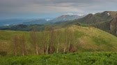 forest : Russia, time lapse. The formation and movement of clouds over the summer slopes of Adygea Bolshoy Thach and the Caucasus Mountains