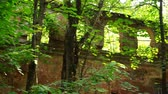 мистический : Old destroyed building in forest with arches