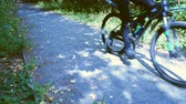workout : Man rides a dirt road in the forest by bike Stock Footage