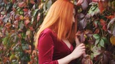 bliss : Girl with red hair posing near the hedge