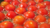 шипение : Frying red cherry tomatoes close up shot Стоковые видеозаписи