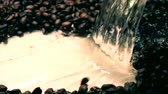 кофе в зернах : Super slow motion shot of pouring water on roasted coffee beans. Cold colors