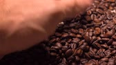 кофе в зернах : Man hand scooping roasted coffee beans, 4K shot