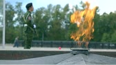 kia : Eternal flame memorial and armed guard. 4K long shot Stock Footage