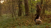 uzun yürüyüşe çıkan kimse : Beautiful slender girl walking in autumn forest holding a picnic basket. Profile view 4K steadicam video