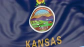 kansas : Waving flag of Kansas state against blue sky. Seamless loop 4K clip