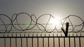 sigilo : Silhouette of barbed and razor wire on the fence Stock Footage
