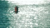 float : Floating buoy with number 21 on it. Slow motion shot