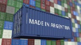 arjantin : Cargo container with MADE IN ARGENTINA caption. Argentinean import or export related loopable animation Stok Video