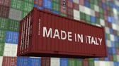 forwarder : Container with MADE IN ITALY caption. Italian import or export related loopable animation