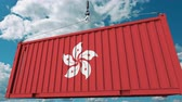 forwarder : Loading container with flag of Hong Kong. Import or export related conceptual 3D animation Stock Footage