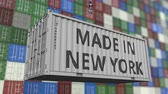 resim yazı : Container with MADE IN NEW YORK caption. Import or export related loopable animation
