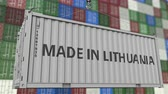 guindastes : Loading container with MADE IN LITHUANIA caption. Lithuanian import or export related loopable animation