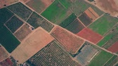 remendo : Aerial top down view of colorful fields, greenhouses and orchards pattern in Spain Stock Footage