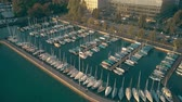 watercraft : Aerial view of Zurichsee or lake Zurich marina full of moored sailboats Stock Footage