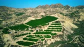 гористый : Aerial view of typical orchards scenery in Spain