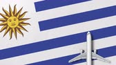 uruguay : Top-down view of the airplane on the flag of Uruguay. Tourism related conceptual 3D animation Stock Footage