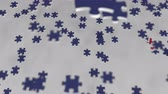элемент : Flag of New Zealand being made with jigsaw puzzle pieces. Problem solution conceptual 3D animation