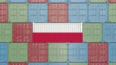 havens : Ladingscontainer met vlag van Polen. Poolse import of export gerelateerde 3D-animatie Stockvideo
