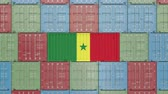 senegal : Container with flag of Senegal. Senegalese export related 3D animation Stock Footage
